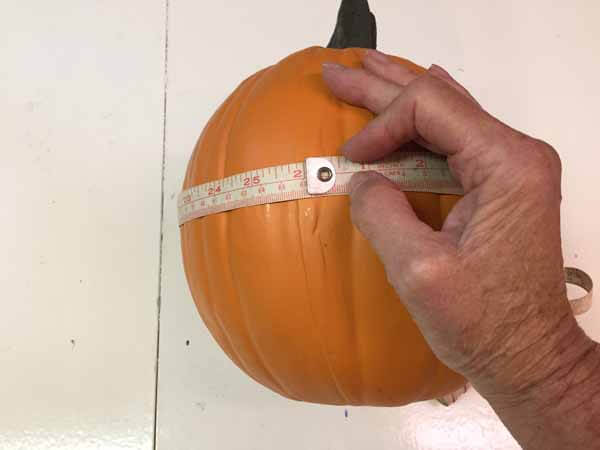 Cute as a Button Pumpkin - Measure Pumpkin