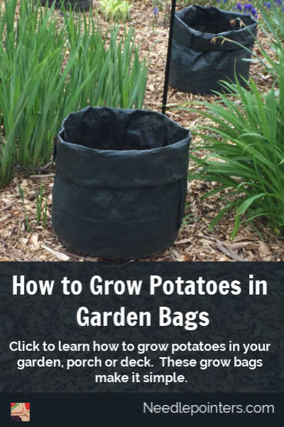 How to Grow Potatoes in Bags - pin