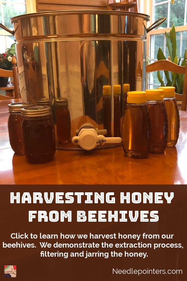 Harvesting Honey from Beehives - pin