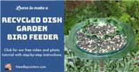 Dish Garden Bird Feeder