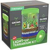 Light Up Terrarium Kit for Kids
