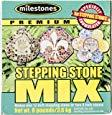 Premium Stepping Stone Cement Mix, 8 lbs.