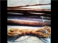 Indian Hemp - Part 2 - Making Cordage